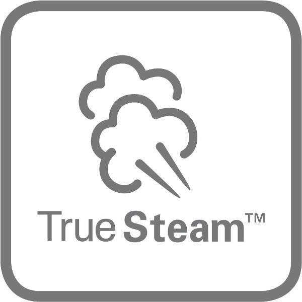 TrueSteam™